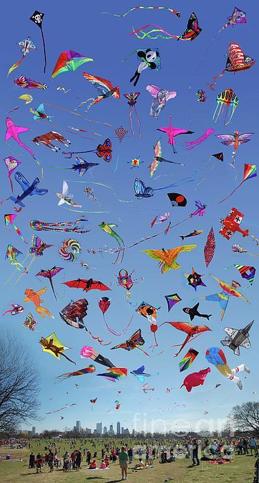 Bruce Lemons - Kite Variety Chart at the Zilker Kite Festival - Austin - Texas