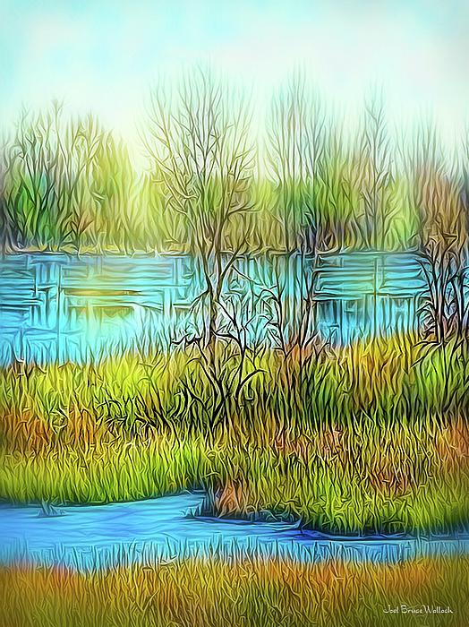 Joel Bruce Wallach - Lake Day Flow