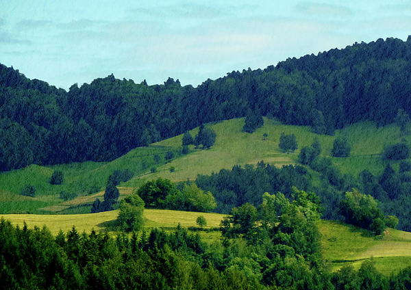 Gerlya Sunshine - Landscape. Top view of the Black Forest, Germany.