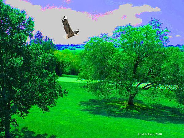 Fred Jinkins - Landscape with Eagle
