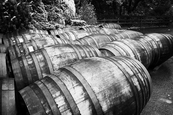 Joe Fox - Large Whisky Barrels At The Famous Grouse Glenturret Distillery Scotland Uk