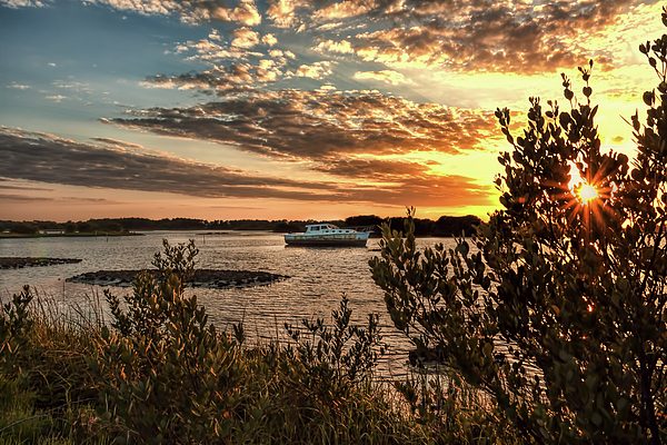 John M Bailey - Late Afternoon in Cedar Key