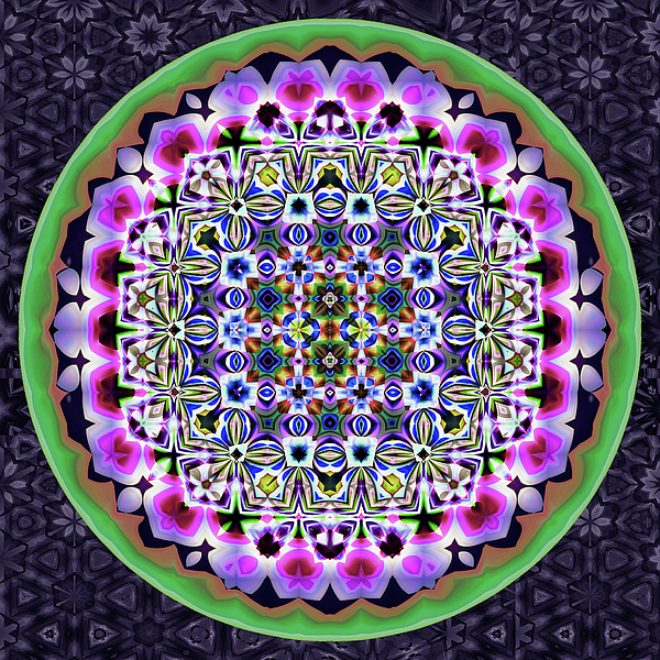 Grace Iradian - Lavender Drum Top-series