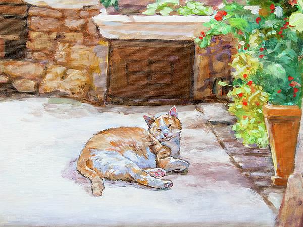 Dominique Amendola - Lazy Cat