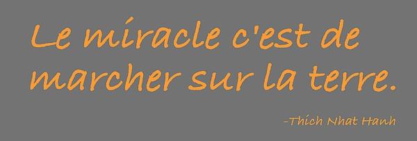 Le Miracle Digital Art