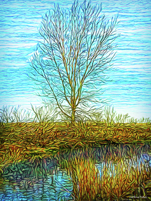 Joel Bruce Wallach - Light On A Morning Pond