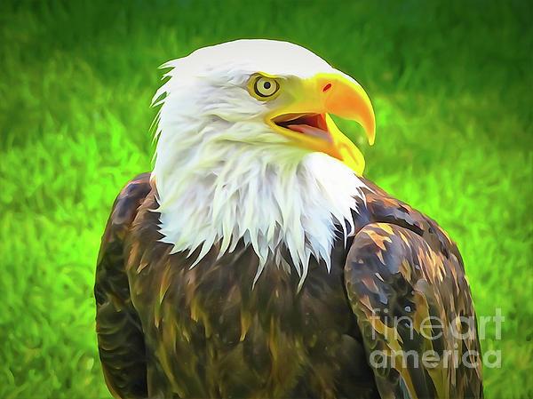Bob Lentz - Lincoln Bald Eagle