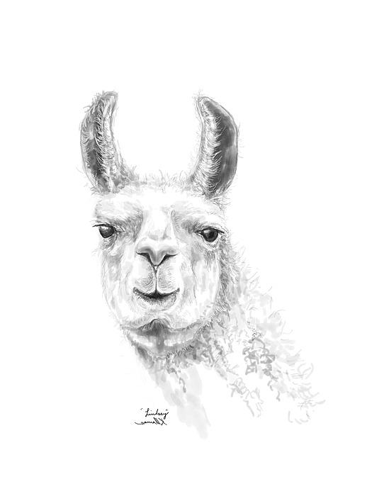 Linsdey Drawing