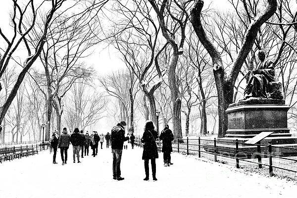 Regina Geoghan - Literary Walk Central Park Snowfall