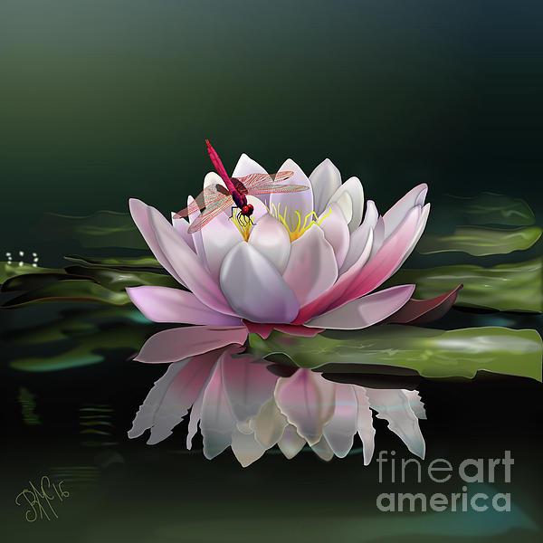 Rosa Cobos - Lotus Meditation