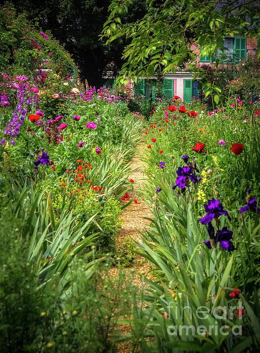 Liesl Walsh - Lush Garden Path at Giverny, France