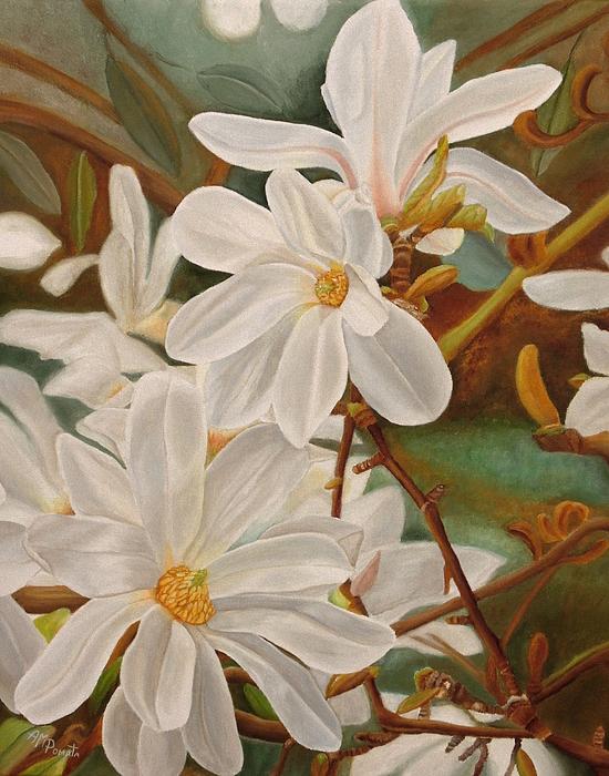 Angeles M Pomata - Magnolias