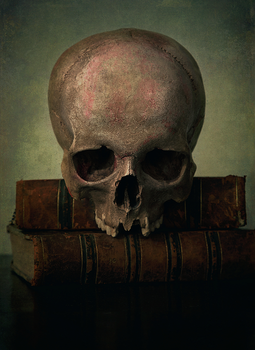 Jaroslaw Blaminsky - Male skull and old books