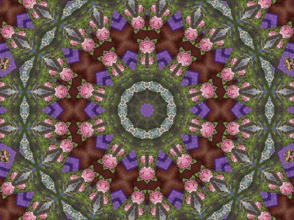 Marians Quilt Mandala Digital Art