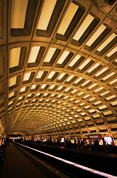 Mitch Cat - Metro Station