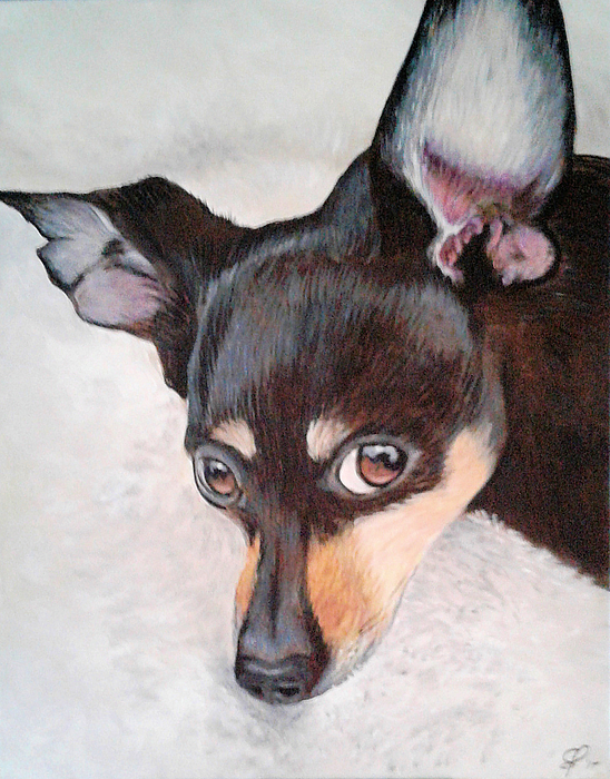 Mighty Zeus The Minpin Greeting Card