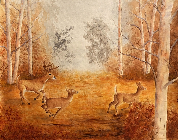 Denise Harty - Misty Morning Run