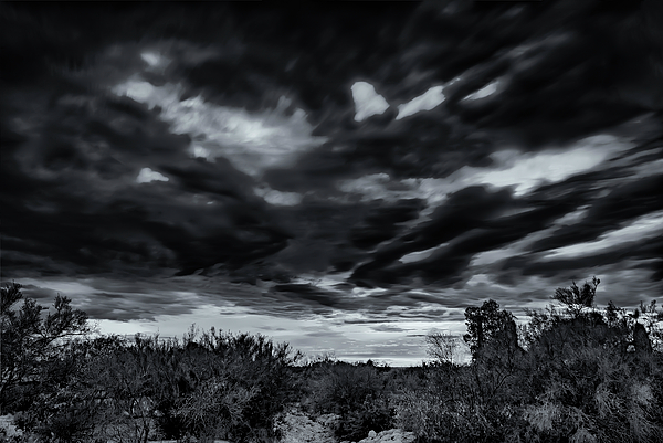 Monsoon Mono H45 Photograph