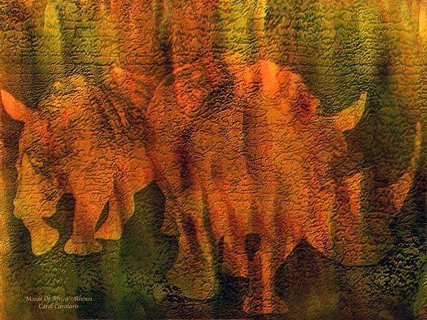 Carol Cavalaris - Moods Of Africa - Rhinos
