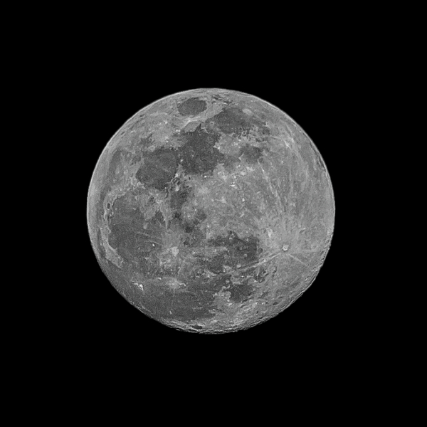 Moon 98 Percent Photograph