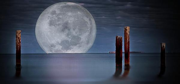 Kym Clarke - Moonlight Imagination