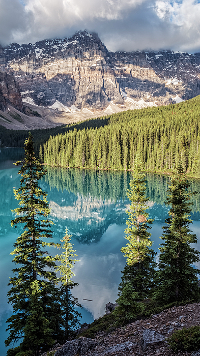 Joan Carroll - Moraine Lake Summer Morning Vertical
