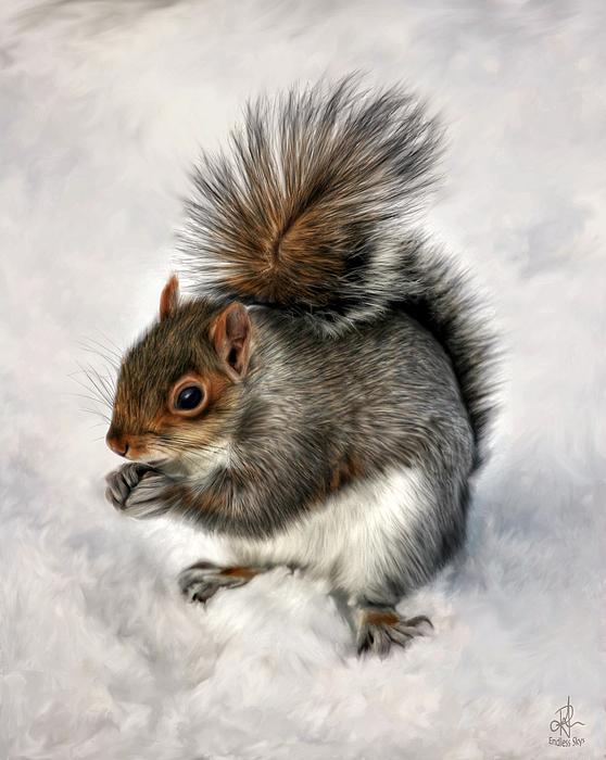 Pennie  McCracken - Mr. Squirrel