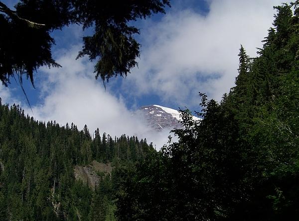 Charles Robinson - Mt Rainier Peek-A-Boo