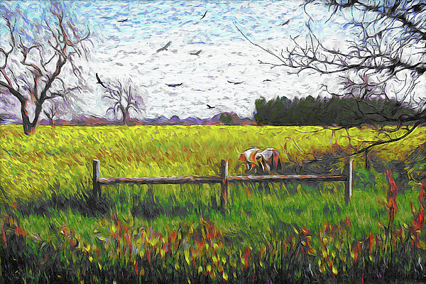 Dominique Amendola - Mustard Field Van Gogh Style