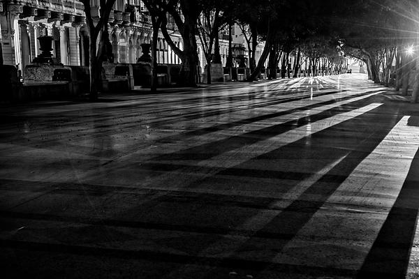 Joan Carroll - Night Shadows