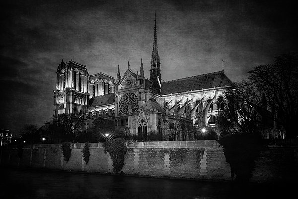 Joan Carroll - Notre Dame on the Seine BW