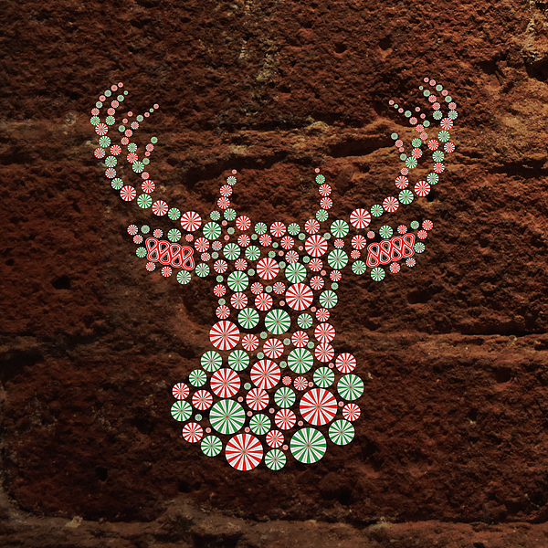 Oh Sweet Deer Photograph