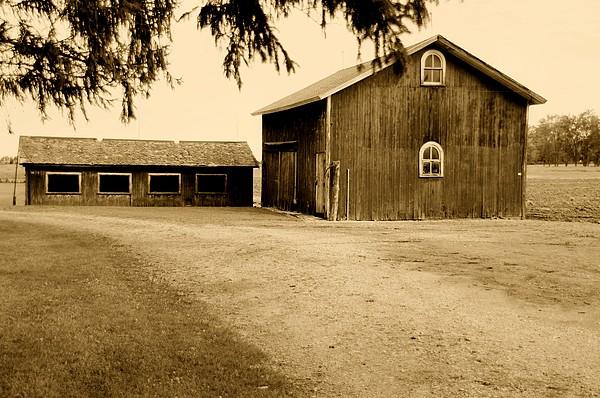 Kathleen Struckle - Old Barn