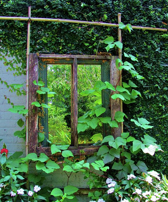Cynthia Guinn - Old Kitchen Window