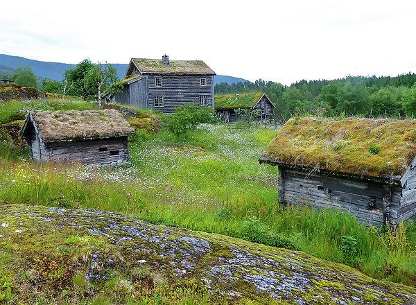 Norma Brandsberg - Old Norwegian Farm