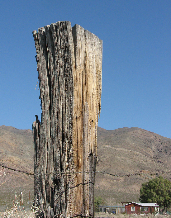 old-wooden-post-helaine-cummins.jpg