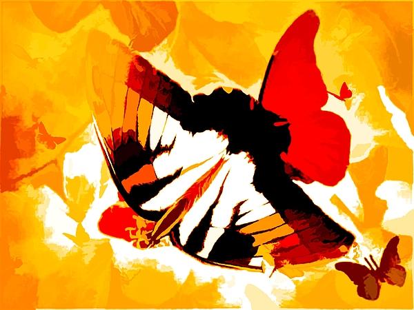 Debra Lynch - On The Wings Of Butterflies In Abstract