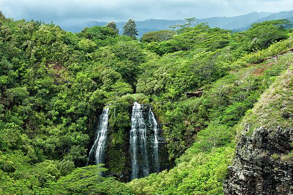 Maria Keady - Opaekaa Falls