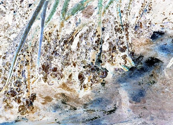 John Hintz - Oppostracts 22 - Mangrove Shoreline