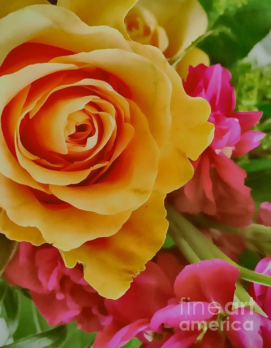 Jenny Revitz Soper - Orange Rose