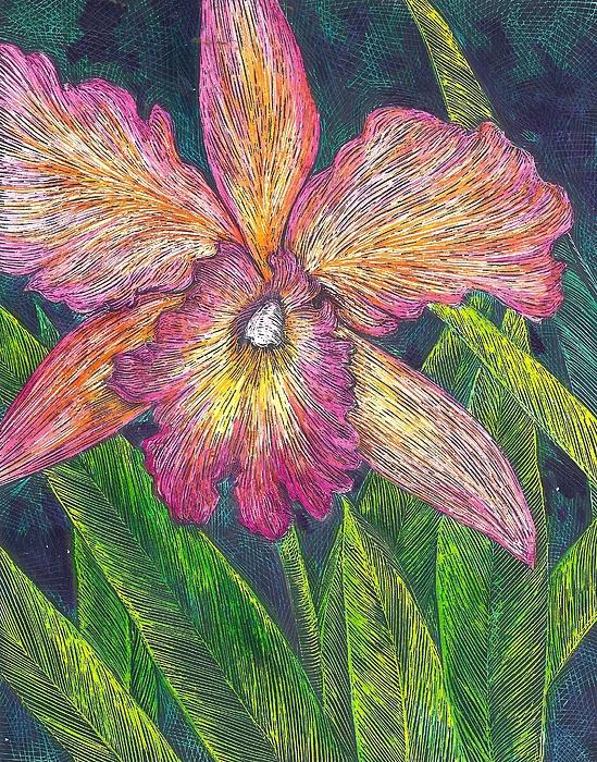 Cynthia Conklin - Orchid 2
