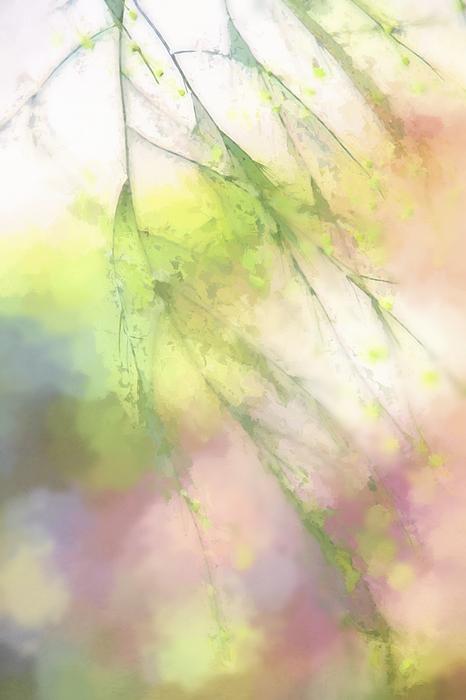 Terry Davis - Pastel Spring Whispers