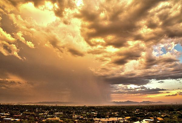 Cathy Franklin - Phoenix Rain Storm