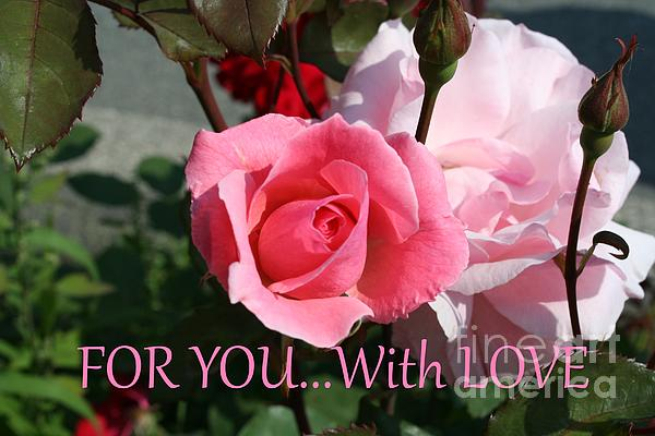 Nisha Verma - Pink Rose