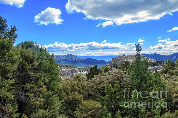 Robert Bales - Pinyon Pine and City Of Rocks