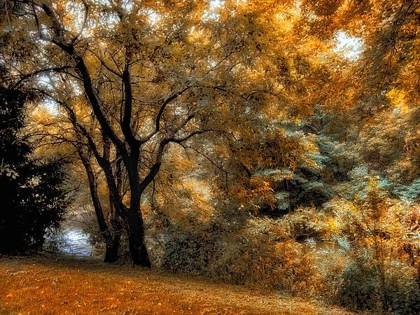 Jessica Jenney - Prelude to Autumn