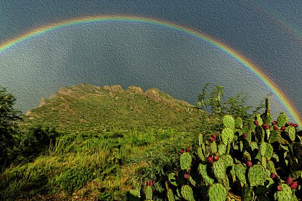 Pusch Ridge Rainbow 0p39 Photograph