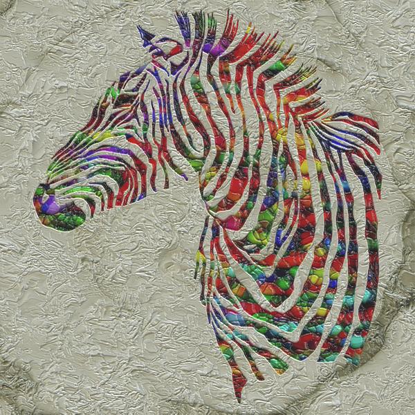 Jack Zulli - Rainbow Color Zebra