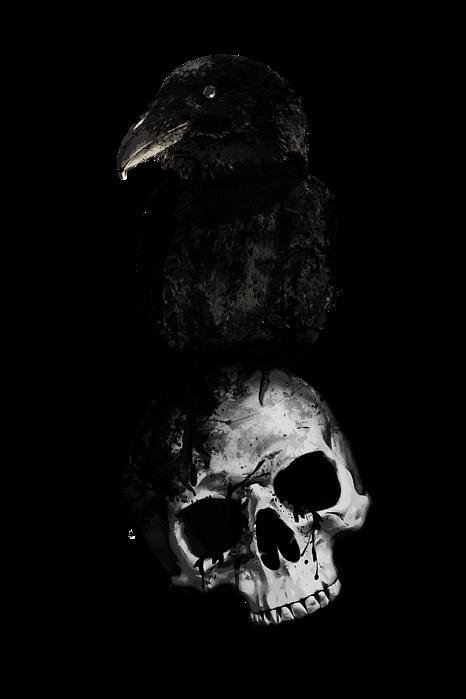 raven-and-skull-nicklas-gustafsson-trans