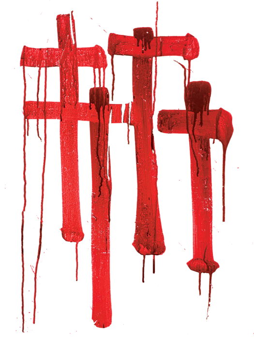 Red Crosses Shower Curtain For Sale By H James Hoff